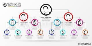 Organization Chart Vector Infographic Design Template Creative Organization Chart