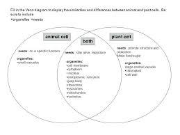 Amdm Venn Diagram Worksheet Answers Diagrams Worksheets Diagram Worksheet Template Three Circle With
