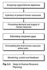 steps in human resource planning explained diagram