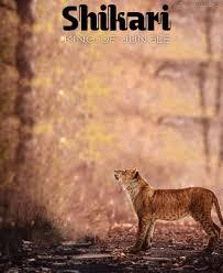 Shikari Jungle Cb Editing Background Picsart Photoshop