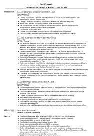 Business Development Manager Resume Samples Sales Business Development Manager Resume Samples Velvet Jobs 4