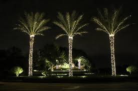 exclusive ideas palm tree lights for trunks corona florida inflatable with outdoor
