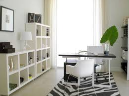 space home office home design home. View In Gallery Ravishing Home Office Space Design E