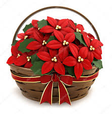 Pictures Clip Art Poinsettias Poinsettia Basket Stock