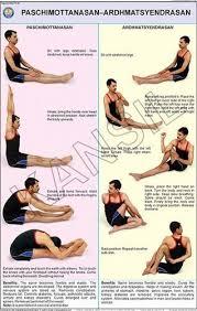 Paschimottanasan Ardh Matsyendrasan For Yoga Chart