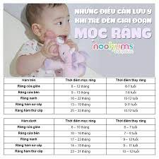 Nookums - Núm ti đồ chơi cho bé từ Mỹ - 👩👧👦Các mẹ đã biết những điều  cần lưu ý khi bé đến giai đoạn mọc răng hay chưa ⁉️ Trẻ mọc