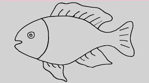Small Picture How to draw a fish Animation and entertainment for kids YouTube