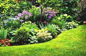 flower garden plans. Garden Designs, Perennial Ideas For Full Sun Gardening Plans Landing Flower Within Designs Sun: F