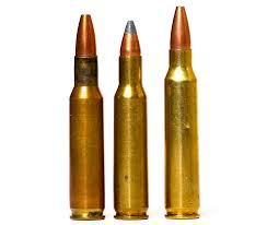 Coyote Cartridges 223 Rem Vs 22 250 Rem Vs 243 Win
