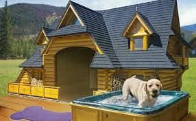 dog kennel floor plans beautiful 30 awesome dog house diy ideas indoor outdoor design photos of