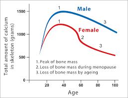 Bone Health K2d3