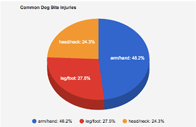 Chart Dog Graph Pie Chart Of Common Dog Bite Injuries On Wacom Gallery