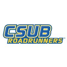 csu bakersfield roadrunners logo iron on transfers n4058