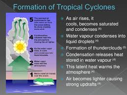 Image result for Characteristics of Temperate Cyclone