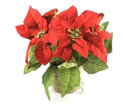 Pshop Christstern Weihnachtsstern Mit Led Lichterkette Rot H 26 Cm