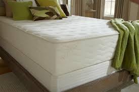 latex mattress reviews. botanical bliss thumbnail 1 2 latex mattress reviews