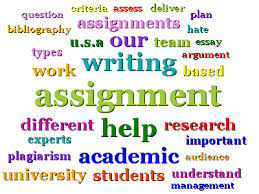 assignment help usa online assignment writing service usa assignment help usa