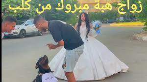 هبة مبروك اتجوزت كلب 👽 - YouTube