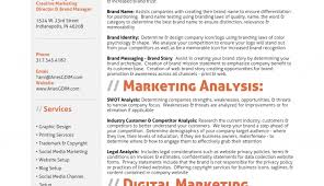 Resume Professional Graphic Design Resume Resume Design Of Sven