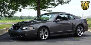 Ford Mustang Svt Cobra Terminator For Sale ▷ Used Cars On ...