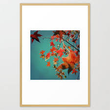 Autumn Leaves art Photograph Red Orange Yellow Fall Leaves Teal sky Season  of Fall Wall Art 8x8