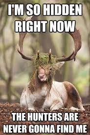 funny hunting es and jokes esgram