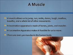 moyca s persuasive essay human body 4