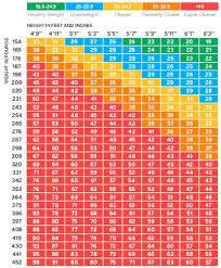Bariatric Bmi Chart Bmi Scale Chart Jasonkellyphoto Co