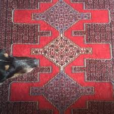 photo of ali sharifi rugs portland or united states dobie s favorite spot