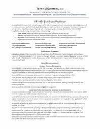 Resume For A Business Analyst Sample Resume Business Format New 30 Professional Business Analyst