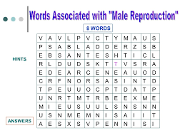 buzzword bingo generator wordsearch repro