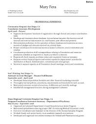 Examples Of Resumes Professional Resume Free Regarding Example A