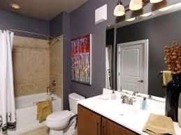 Bathroom Decoration Ideas Amazing Of Bathroom Decorating Ideas