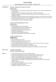 Parts Of A Resume Parts Counter Resume Samples Velvet Jobs 9