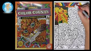 Small Picture Mindware Color Counts Animals Coloring Book Review Toucan Bird