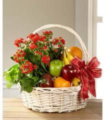 garden s paradise basket