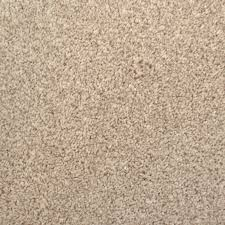 tan carpet floor. Fine Tan Earthy Tan 685 Noble Heathers Saxony Carpet For Floor C