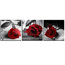 art 3 pcs black white with red wall art