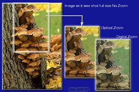 Image result for What Is a Camera Zoom Lens Definition