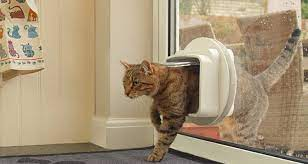 how much to install a pet flap dog