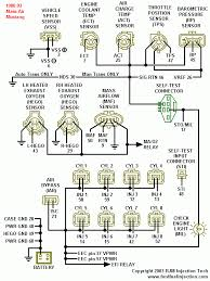 93 mustang wiring harness diagram 93 image wiring 1991 mustang efi wiring harness 1991 auto wiring diagram schematic on 93 mustang wiring harness diagram