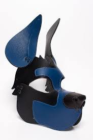retriever puppy mask dark blue