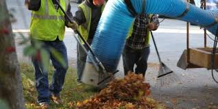 Image result for leaf vacuuming service