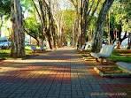 imagem de Campo Belo Minas Gerais n-9