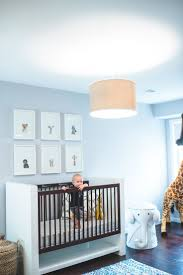 Modern Safari Nursery. Safari Nursery ThemesSafari Room ...