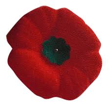 Image result for poppy picture