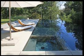 backyard infinity pools. Backyard Infinity Pool With Out Door Seating Pools I