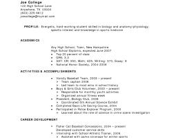High School Student Resume Templates Export Agent Sample Resume