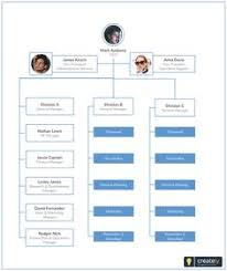 7 Best Company Structure Images Company Structure How To
