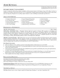 Project Manager Resume Sample Custom Project Manager Sample Resume Best Of Capture Manager Capture